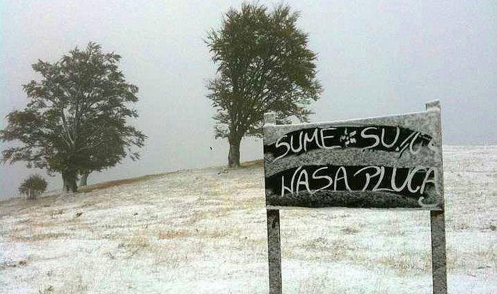 vlasic-snijeg