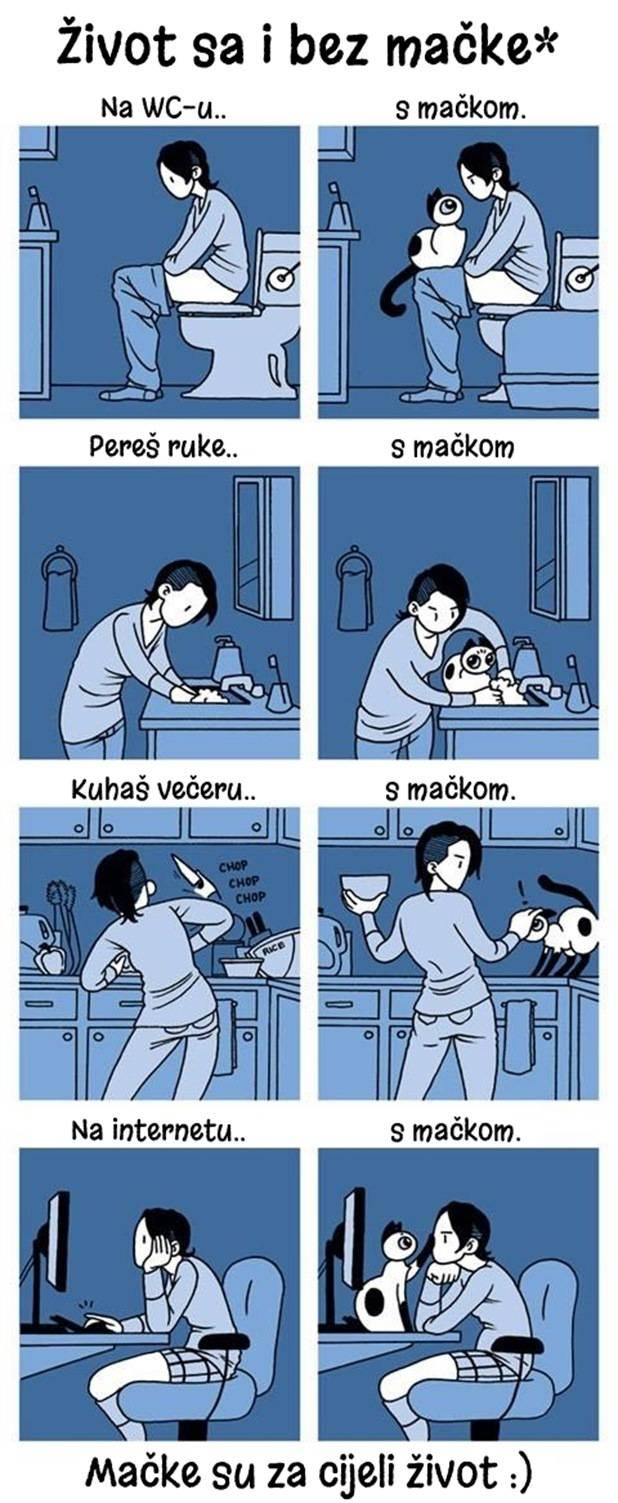 zivot-macka