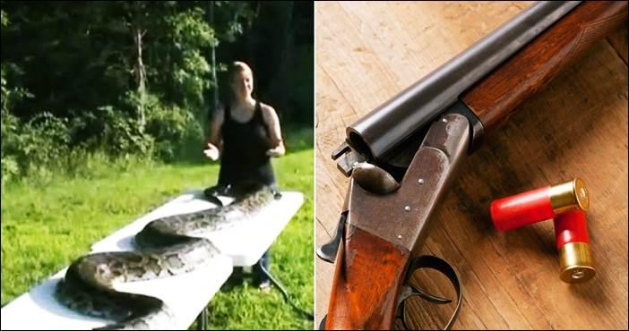 Burmese-Python-piton-u-dvoristu-ubijen
