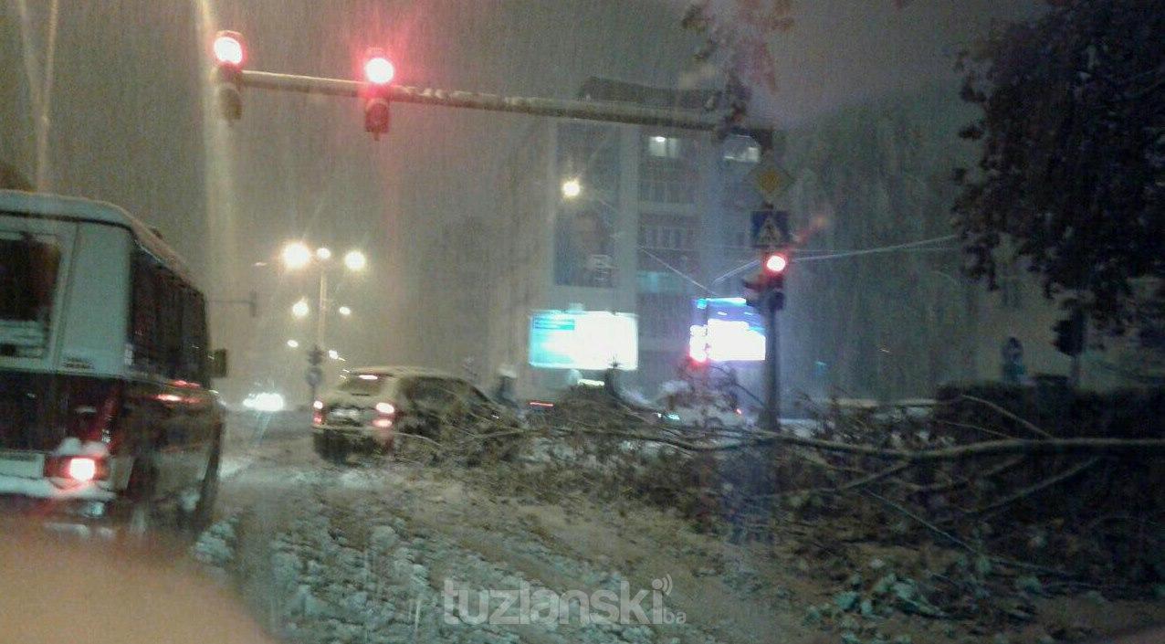 stablo-oboreno-centar-skola-snijeg