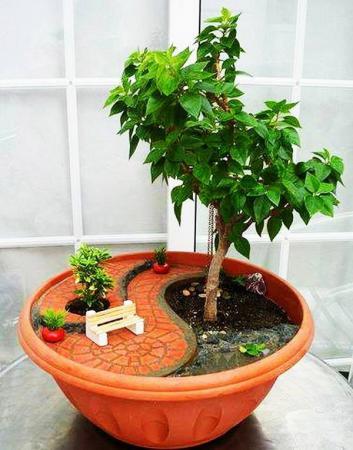 Nekoliko ideja za vaš vlastiti minijaturni vrt (FOTO)  Tuzlanski.ba