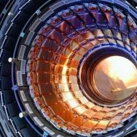 Lisica digla uzbunu u CERN-u