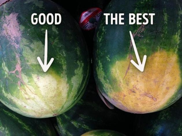 kako-izabrati-savrsenu-lubenicu-savjeti-iskusnog-poljoprivrednika-tuzlanskiba001-20160731