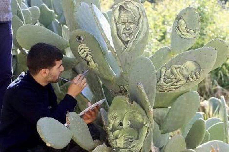 palestinac-slikanje-na-kaktusu (3)