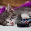 Spavaš sa upaljenim televizorom? Nećeš više kad pročitaš šta to radi tvom tijelu