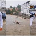 Banjalučanin zaplivao usred grada: Samo da pohvalim kružni tok od 650.000 KM (VIDEO)