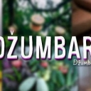 Nastavlja se Džumbus Festival: Kreativni bazar i DJ party za dobru zabavu u Zlatarskoj