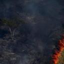 Proždire je plamen: Stotine novih požara u Amazonu