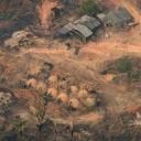Naučnici: Iza požara u Amazonu krije se međunarodna glad za govedinom i sojom