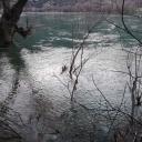 Bijeljina: Ronioci iz Drine izvukli tijelo muškarca