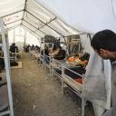 Među migrantima u Bihaću bilo je slučajeva AIDS-a, hepatitisa, tuberkuloze…