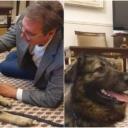 Vučića nakon izlaska iz bolnice u kabinetu dočekao pas Pako