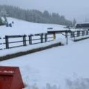 Snijeg zatrpao dijelove Austrije: Sela odsječena, proglašena najviša opasnost