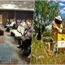 Pčelarstvo može smanjiti siromaštvo: Za život četvoročlane porodice potrebno 60 košnica